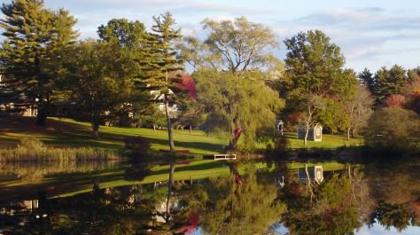 Lake during Fall